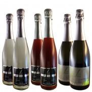 Probierpaket Sekt/Perlwein (6Flaschen)